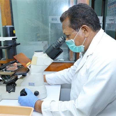 Cell And Tissue Culture Facilities